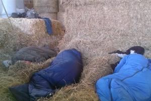 Ardennen 2014 slapen in stro