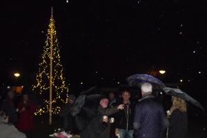 Kerstboom-Keesomstraat-ontstoken-2-151213