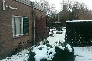 Wawona in de sneeuw 141230