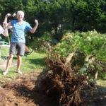 Werkvakanties Vogezen als tuinklussers 'La Papillonne'