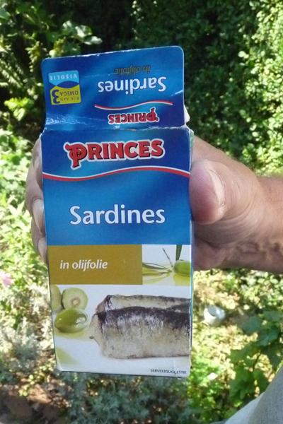 Blik sardientjes: het lokmiddel