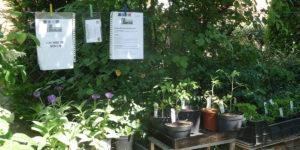 Plantjesruilhoek